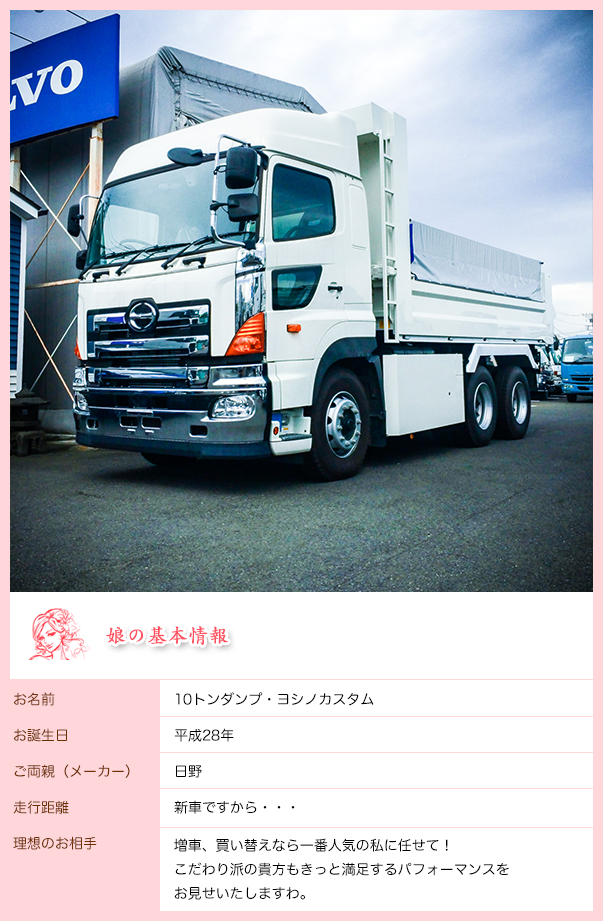 main_10t_custom
