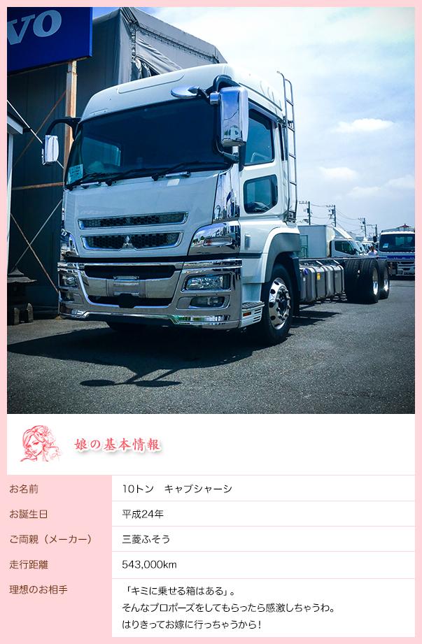 main_10t_cab